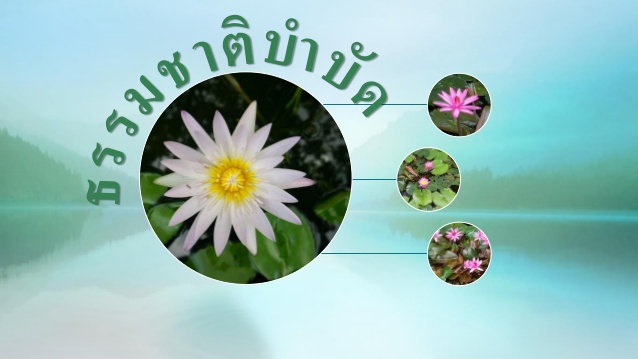 naturopathy-picturee